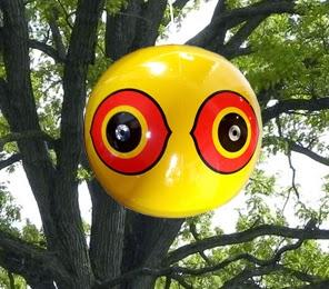 Scare-Eye_tree-app_full