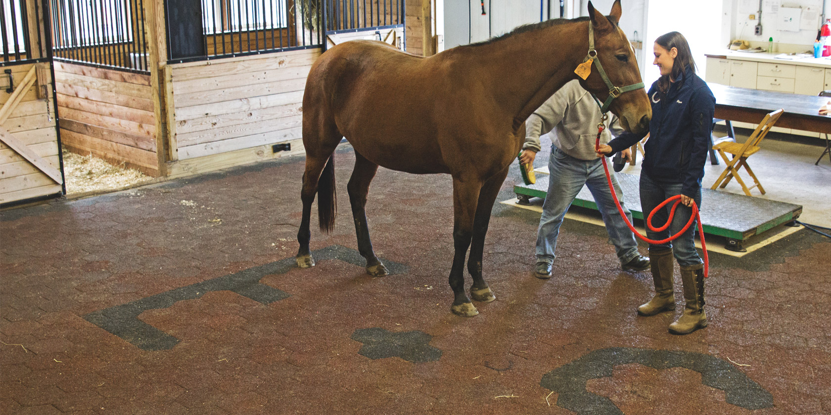 Red Barn Rubberized pavers flooring provides cushioning and traction for both horses and humans.