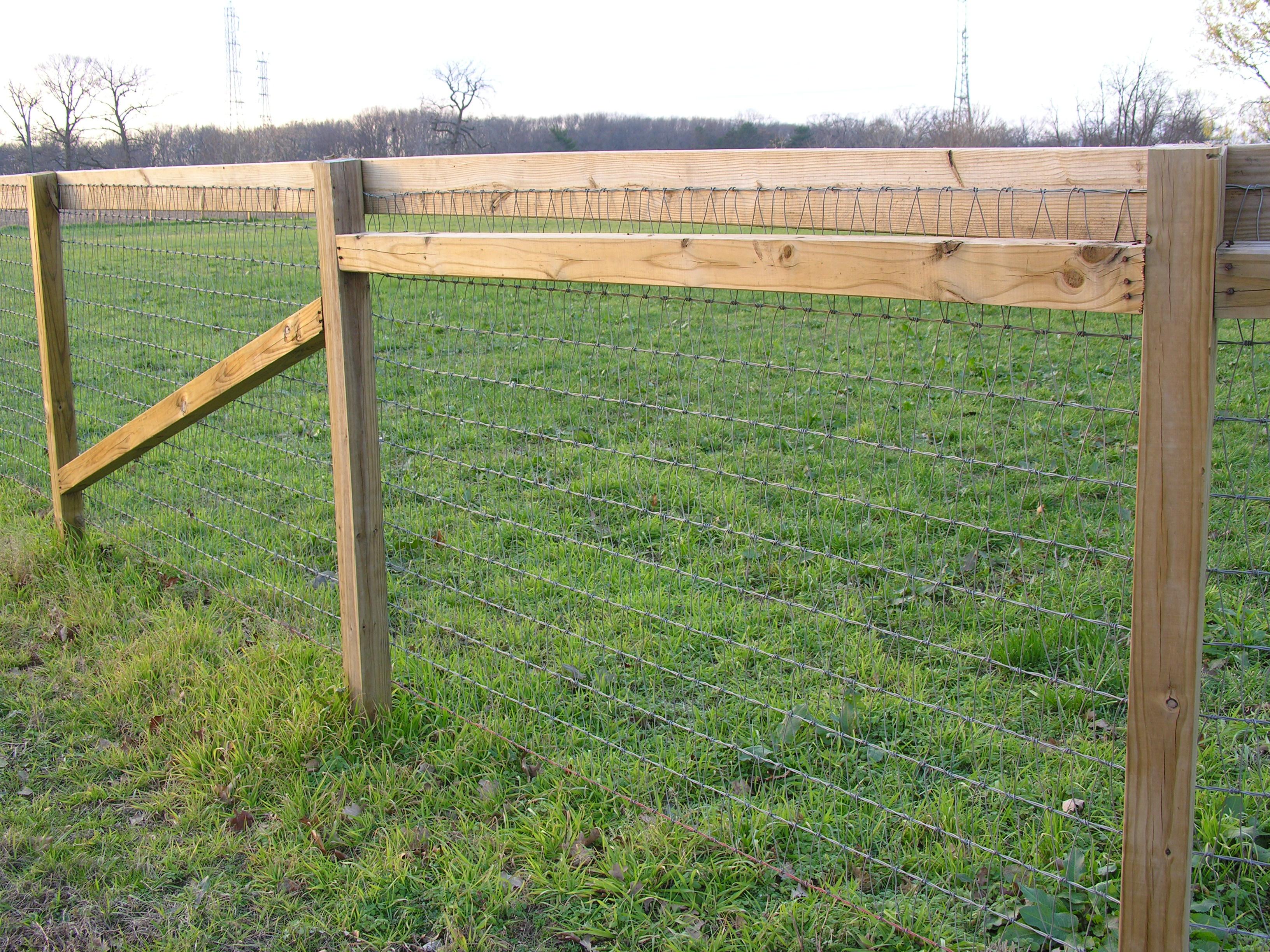 New Perimeter Fence