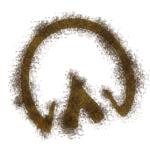 Hoof print_brown