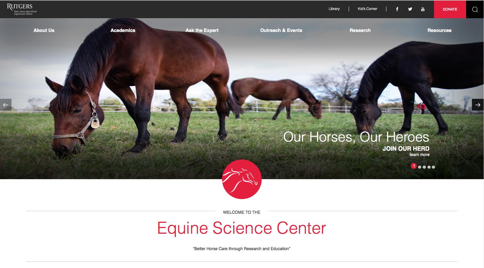 Website Homepage copy