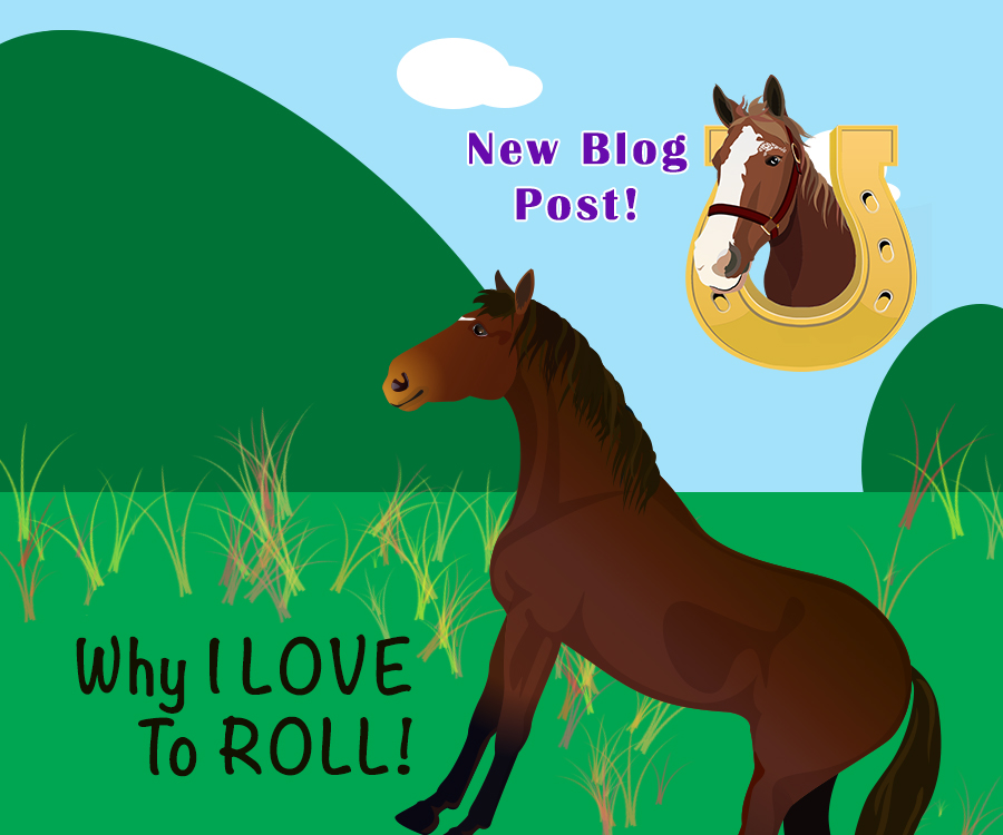Why I Love To Roll! Blog Post